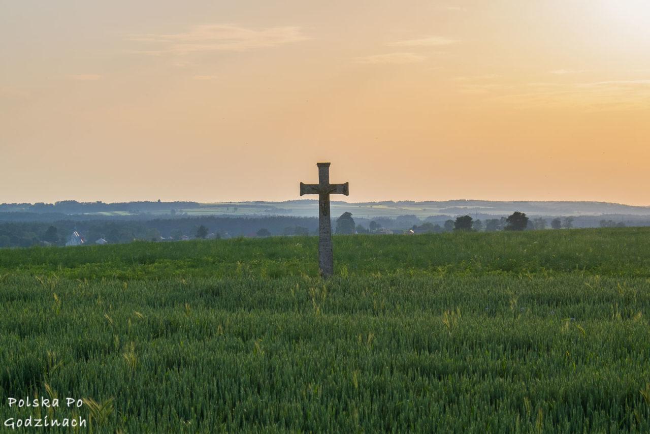 samotny bruśnieński krzyż w polu ze zbożem na Roztoczu Wschodnim