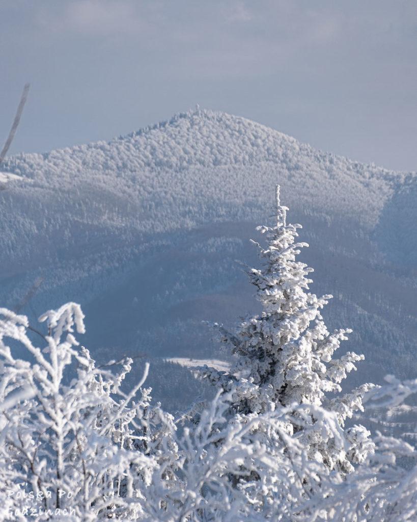 Zima w Beskidzie Wyspowym i widok na Mogielicę.
