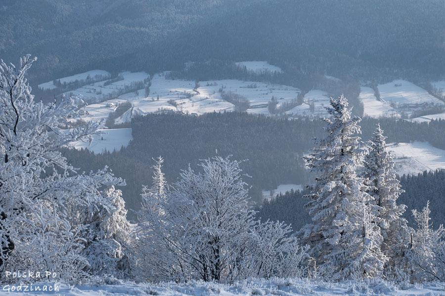 Prawdziwa zima. Śnieg pokrywa pola i drzewa.