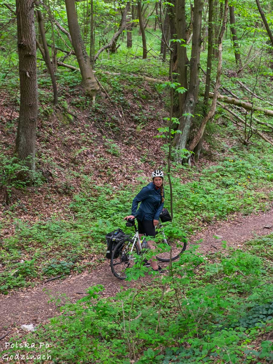 rowerzystka w Dolinie Będkowskiej